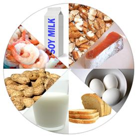 food-allergy-wheel