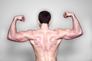 train-muscle-gain-body-building